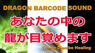 ドラゴンバーコード  サウンド  Dragon Barcode Sound
