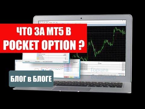 МТ5 в Pocket Option - что это за зверь?