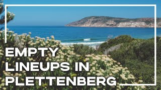 Surfing in Plettenberg Bay, South Africa | Stoked For Travel