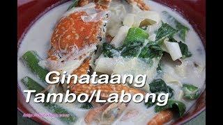 Ginataang Tambo/Labong (Bamboo Shoots in Coconut milk)