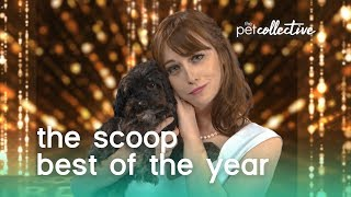 Best of the Year 2019 | The Scoop
