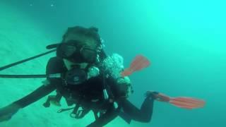 Buceo en Galápagos, Destino Sudamérica