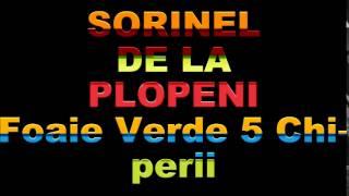 SORINEL DE LA PLOPENI    FOAIE VERDE 5 CHIPERII