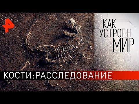 """Кости: расследование. """"Как устроен мир"""" с Тимофеем Баженовым (27.02.20)."""