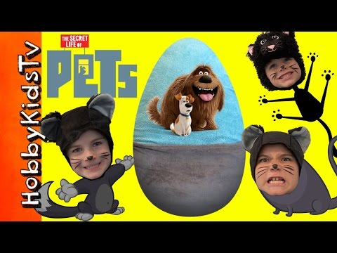 World's Biggest PETS Surprise Egg! Dogs + Cats Talking Toys. The Secret Life of PETS HobbyKidsTV