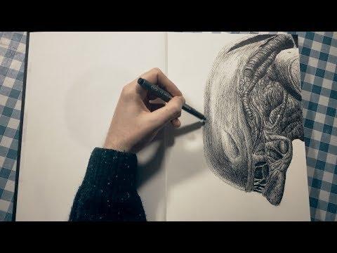 Paul King Sketches  Xenomorph Animation  & Timelapse