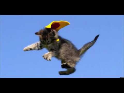 Fly High parody (KEH version).