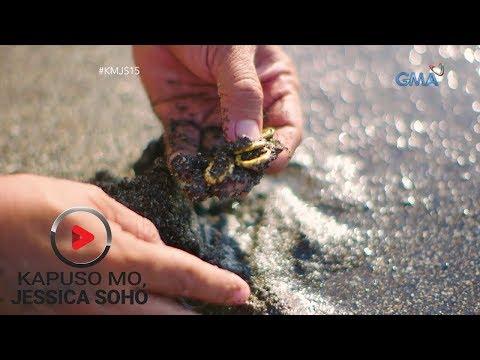 Kapuso Mo, Jessica Soho: Pira-pirasong ginto sa Napalisan, Samar, may dala raw sumpa?!