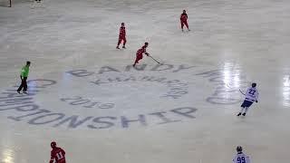 Россия Финляндия  Чемпионат мира по хоккею с мячом 2018