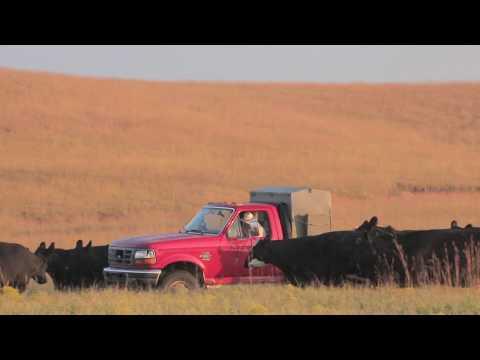 American Rancher Cargill Promo