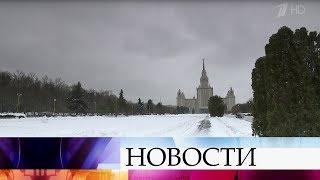Снежные и морозные выходные обещают синоптики жителям центральной России.