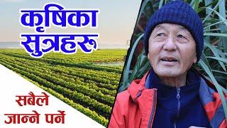 कृषि क्रान्तिका सुत्रहरु सबैले जान्ने पर्ने | Madan Rai Agriculture 2021