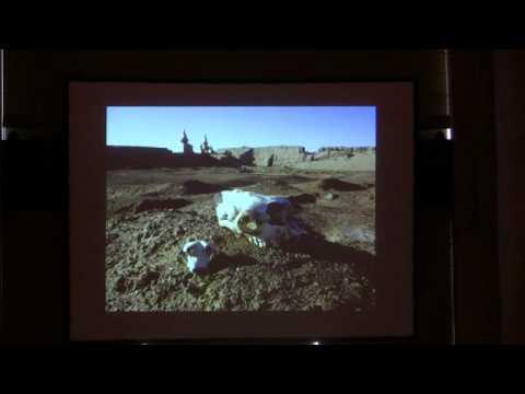 Mystery Along the Silk Road: The Discovery of the Black City of Khara Khoto with Julia Verzhibinsky