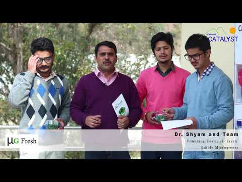 Starting up in Himalayas: Catalyst Startup Companies