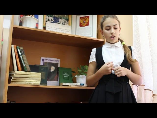 Изображение предпросмотра прочтения – ЕлизаветаЗайцева читает произведение «Когда я один» И.С.Тургенева