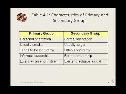 My Sociology Mini Lecture 4.1 What is a Group?