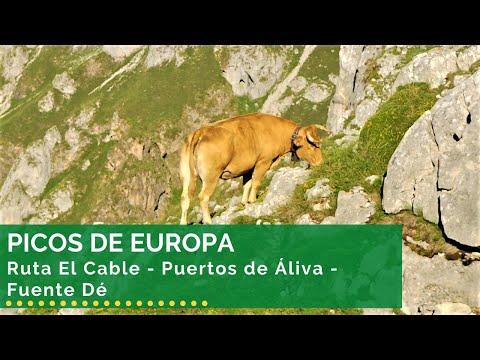 Ruta El Cable - Puertos de Áliva - Fuente Dé