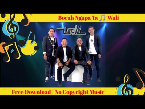 Bocah Ngapa Ya🎵Wali🎵Dj Remix🎵Bebas Di Gunakan Tidak Ada Hak Cipta Musik