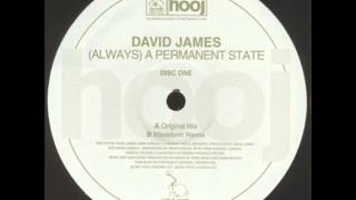David James -  (Always) A Permanent State (Waveform Remix)