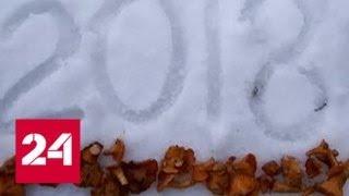 Аномальная зима: одним расстройство, другим - радость - Россия 24