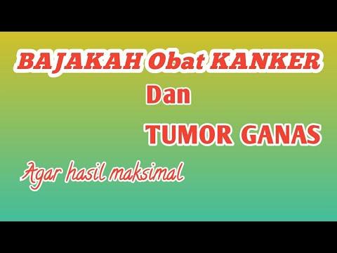 Ternyata!! Obat kanker dan tumor ganas +cara mengolah akar ...