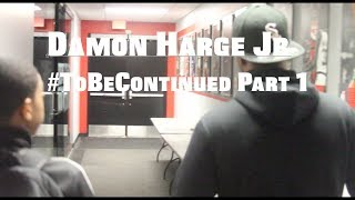Damon Harge #ToBeContinued Part 1 (feat Workouts with KP and off the court grind!!)