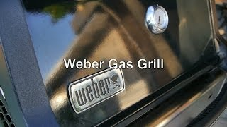 Weber Spirit E-210 Gas Grill Propane Bbq W/ 2 Burner & Electric Starter Parts By Top Rated Brand