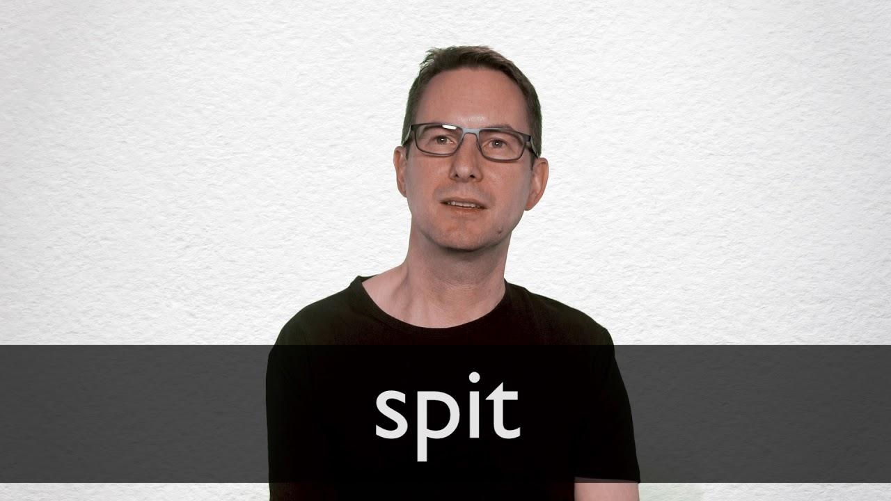 Spit Spit (album)