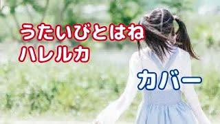うたいびとはねさんのハレルカを弾き語りしてみました♬ 【チャンネル登...