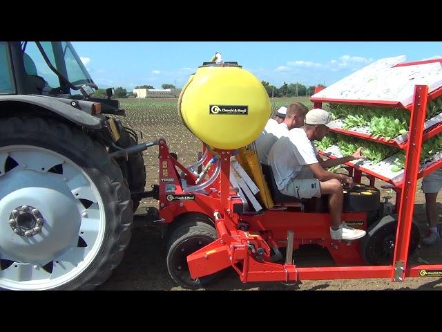 CHECCHI & MAGLI - TRIUM 3 ROWS FARMFLEX - ITALY