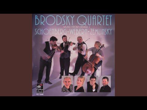 String Quartet In D Major (1897) : Allegro