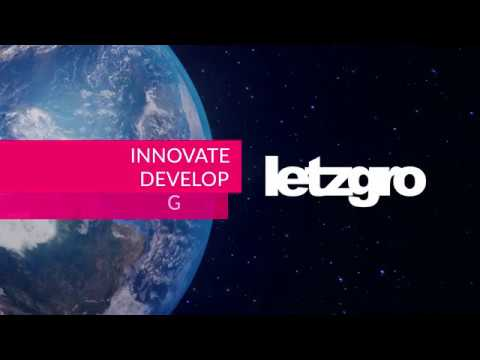 Meet Letzgro - your web, mobile, machine learning and blockchain development team