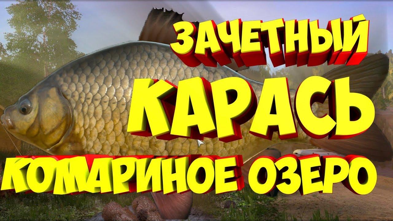 русская рыбалка карась