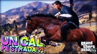 GTA 5 - Cel mai ciudat CAL de pe Stradă !!