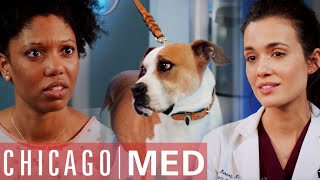 This Dog Could Smell My Cancer?! | Chicago Med