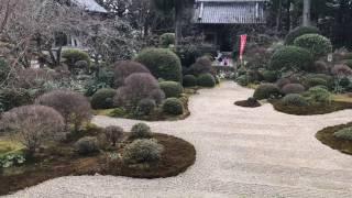 おんな城主直虎 ゆかりの地 龍潭寺に行ってみました 静岡県浜松市 旧引...