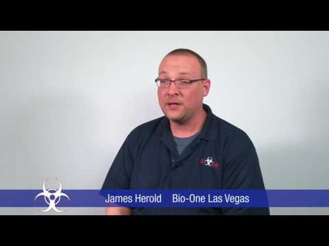 Bio-One Las Vegas – Crime Scene Cleanup, Homicide, Suicide, and Hoarding Services