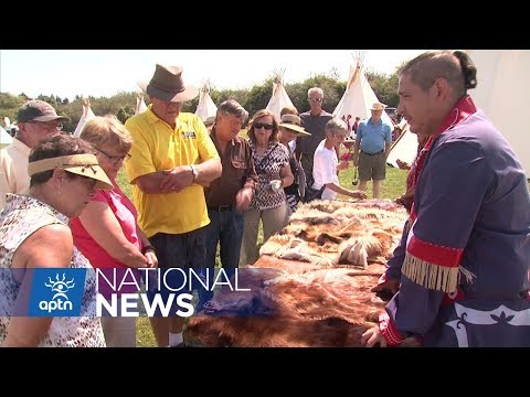 Festival in Nova Scotia Joins Together the Mikmaq and Acadians  APTN News