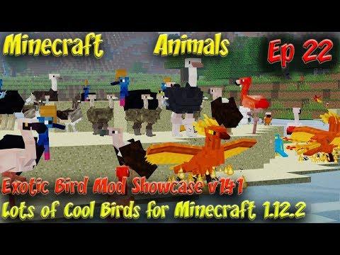 Exotic Birds Mod Animal Showcase V1.41 Minecraft Animals Ep22 Minecraft 1.12.2