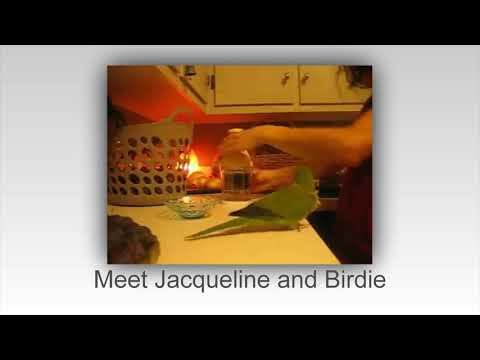 birdie-loves-her-cbd-treats!
