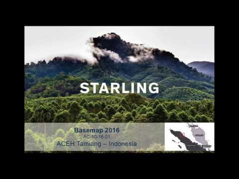 Starling Launch Webinar | Discover everything about Starling