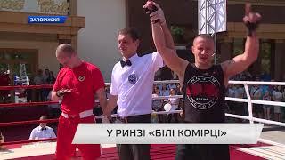 Турнир белых воротничков в г.Запорожье. Сюжет канала TV5.