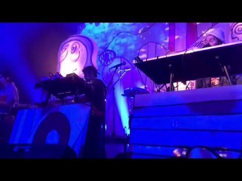 Animal Collective - The Bees (Live at Union Transfer 2-19-16)