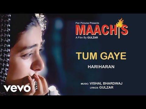 Tum Gaye - Maachis| Hariharan |Official Audio Song