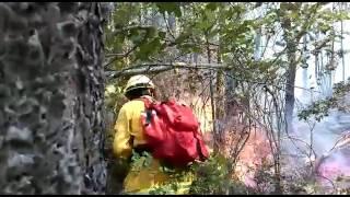 Bomberos Forestales del Perú apagando incendio en Chile.Técnica del Extintor y BateFuegos