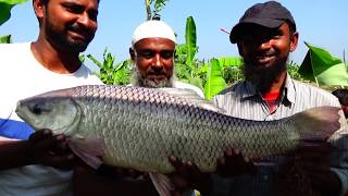 Awesome Rohu Fishing Videos By Fish Watching