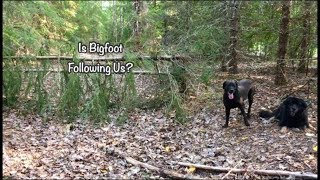 Is Bigfoot Following Us? with Barb & Gabby
