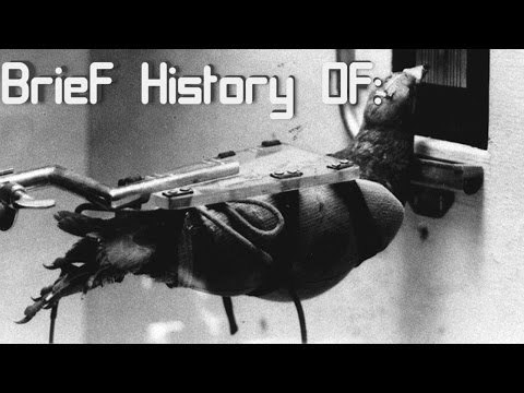 A Brief History of: Project Pigeon Project Orcon