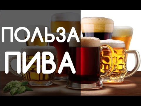 ПИВО. Польза или вред? ТОП-6 фактов о пользе пива - YouTube