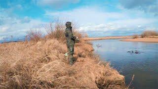 Рыбалка на щуку осенью   ХОРОШИЙ ТРОФЕЙ НА СПИННИНГ Ловля щуки осенью в ноябре 2020  +16
